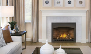Napoleon GX42NTR | Ascent™ X 42 Gas Fireplace Insert